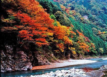三波石峡(群馬県、埼玉県) : ...