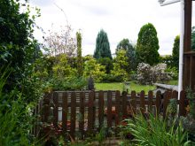 森の家 自然素材 ガーデン ガーデニング 植栽