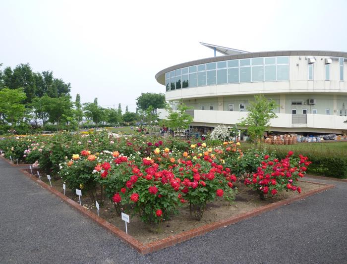 p9-道の駅めぬま